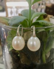 Freshwater Pearl Silver swan earrings