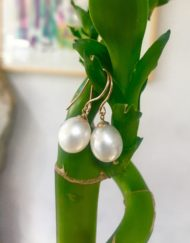 Rose Gold Freshwater Pearl earrings