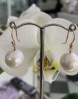 9ct Gold round Pearl drop earrings